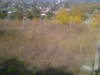 14 sote in satul Donici r-n Orhei ! 35 km de la Chishinau.Sau La Schimb !!!