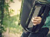 Частное обучение игре на аккордеоне