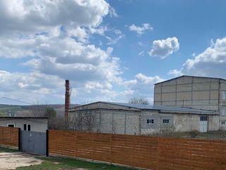 Продается  база-2678 м2, с участком земли-1,4 г. Se vind depozite-2678 m2, cu 1.4 hectare.