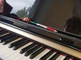 Lecții de pian/ Уроки игры на фортепиано