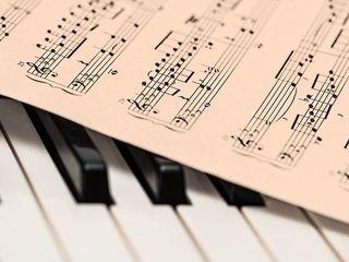 Музыкальное образование! Фортепьяно, сольфеджио, вокал.