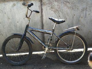 Vind1 bicicleta eftin!!!