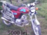 Orox R50
