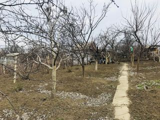 6 ari în Merenii Noi, 22 km de la Chișinău