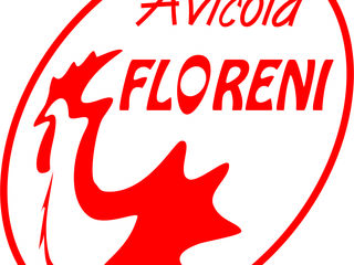 Floreni SA закупает кукурузу, пшеницу, сою, масло соевое