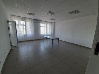 Сдаю 38м2,42м2,54м2,136м2 с мебелью  под офис на Чеканах по ул Мештерул Маноле !