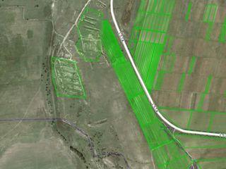 Vînd teren. 3,14 ha. Pretul este pentru tot terenul.posibil scimb.