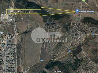 Teren destinat p/u construcție, Tohatin, 6 ari, 7900€ !