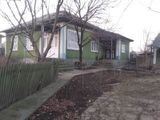 vînd casa în satul Cajba .
