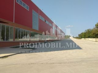 Chirie - industrial — or. hâncești, 4000 m2