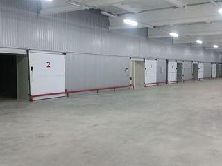 Сдаем офисы,парники и холодильник-современный складской комплекс в Кишиневе на Скулянке!