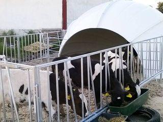 Adapost pentru animale - adapatoare pentru animale