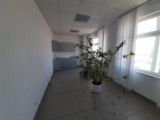 Сдаю 35м2,45м2,80м2 под офис на Чеканах по ул Мештерул Маноле !
