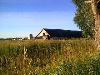 Продается ферма  в н-аненах, 1000 м2, 1 корпус, 2,5 га земли
