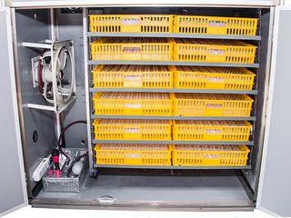 Инкубатор автоматический MS-1056 /  Доставка  бесплатная по всей Молдове + сейчас на скидках !!!