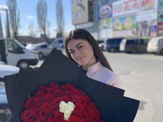 Trandafiri la cel mai bun preț