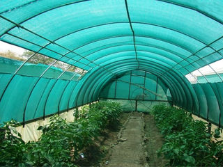 Plasa de umbrire grad 30-75 %  5 lei m2 / сетка для тени