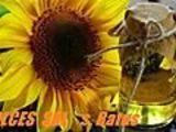 Vind 200 kg de ulei, floarea soarelui, cu 12 lei kg.