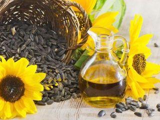 Vind ulei din floarea -soarelui