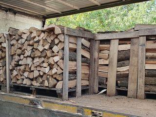 Actie!!! lemne de foc despicate la padon, transportu si descarcatu din contu nostru (дрова колоть)