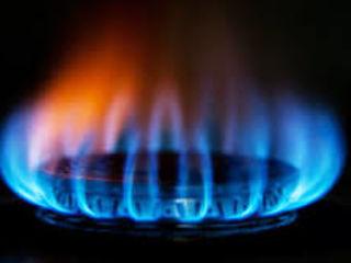 Ремонт, установка и профилактика газовых котлов, колонок и плит