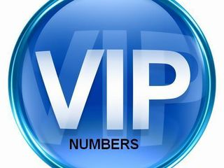 Vip number  78 - 333 - 007