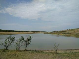 Se vinde lac (iaz), pentru dezvoltarea unei afaceri piscicole