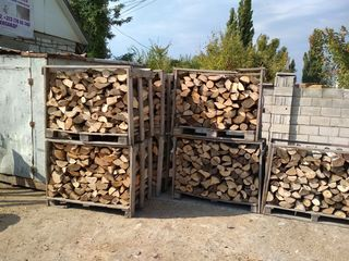 Lemne-дрова