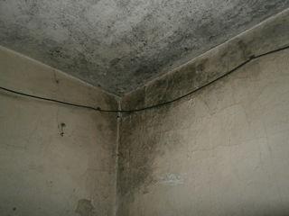 Оценка недвижимости, ущерба  любого имущества, техническая экспертиза зданий , стаж  24 года