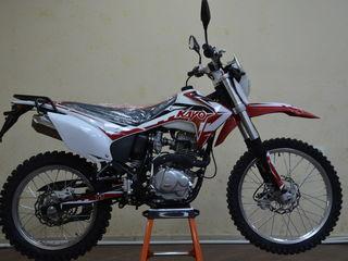Kayo T1 model 2021