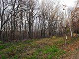 Vând teren cu suprafața de 6 ari cu o priveliște extraoridnară, lîngă pădurea de la Durlești