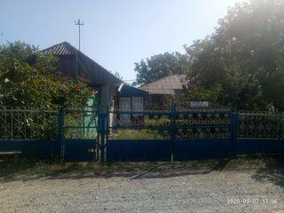 Фалешты, с. Логофтень. Продаю хорошый дом: погреб, сарай, большой огород, деревья.