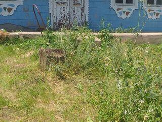 Se vinde  casa in raionul Ungheni satul Untesti