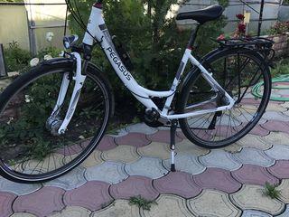Bicicleta Pegasus Solero!