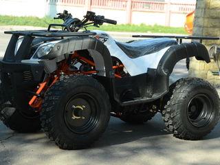 Kayo Bull 150 new 2021