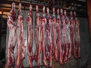 Продам свинину и молодую говядину домашнее под заказ!!