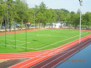 Amenajare teren fotbal.Искусственная трава