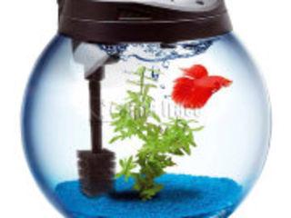 Куплю Нано аквариум, кому срочно нужны деньги или аквариум обычный круглый