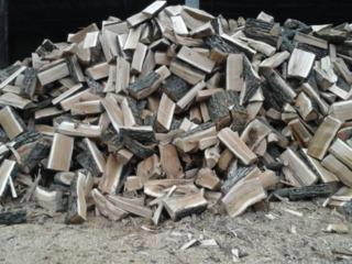 Doriti sa procurati cele mai bune lemne pentru foc uscate si fara putregai, despicate gata .
