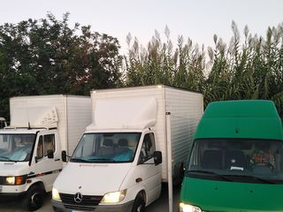 Transport si Hamali Chisinau si Moldova