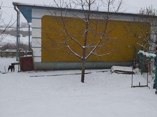 Se vinde casa in s. Nicoreni r. Drochia