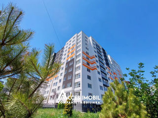 Basconslux! str. N. M. Spătaru, 2 camere+living. Reparație la cheie!