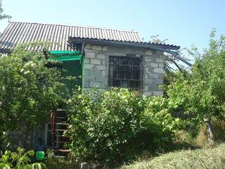 Дача (дом и участок)