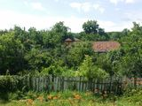 casa in Cojusna
