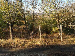 Urgent, 6 ha, Lot p/u constructie