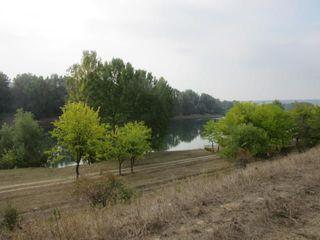 Продается уютная дача в респектабельном месте, вблизи Днестра (100 метров) село пырыта 22 км о