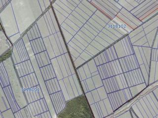 Vînd teren agricol 0,67 hectare, r-nul Criuleni, com. Boşcana la doar 3000 Euro