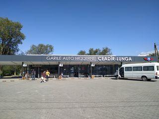 Аренда помещений на Автовокзале Чадыр Лунга. Chirie spatiile comerciale la Autogara Ceadir Lunga.