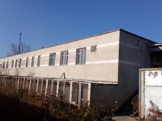 Construcţii comerciale, mun. Chişinău, str. Industrială 59