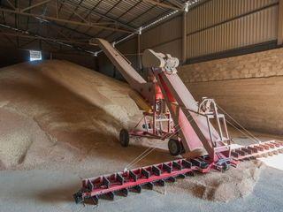 Продам пшеницу 40тонн